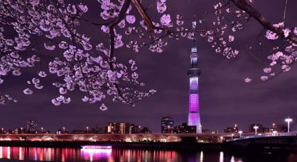Bilder av Rainbow Village Ueno