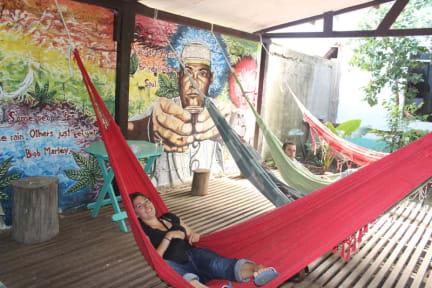 Fotos de Tambopata Hostel