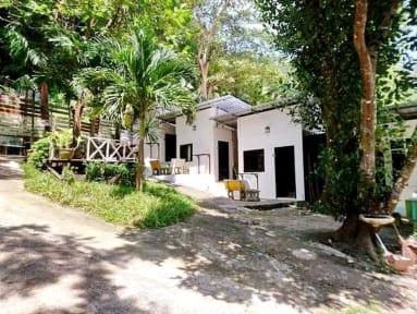 Tuk Tuk Guesthouseの写真