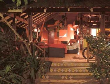 Titeres Hostel Punta Uva Puerto Viejo照片