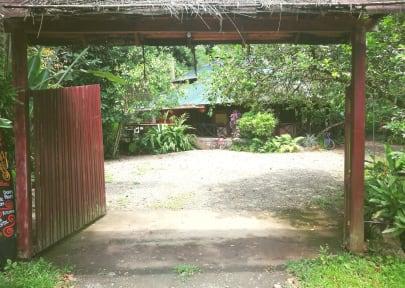 Kuvia paikasta: Titeres Hostel Punta Uva Puerto Viejo