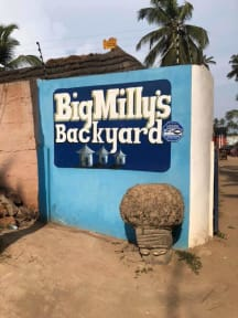 Fotky Big Milly's Backyard Ltd