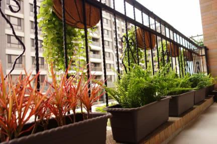 Douzi Hotel照片