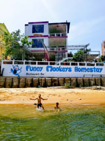 Photos of Funny Monkeys Homestay