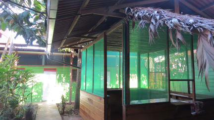 Tambopata Hostel & Tours the Bambú照片