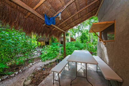 Fotografias de Holistic Tikun - Cozumel Retreat & Eco Center