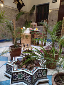Riad Assou tesisinden Fotoğraflar