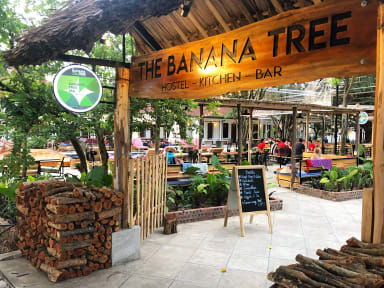 Photos of The Banana Tree Hostel