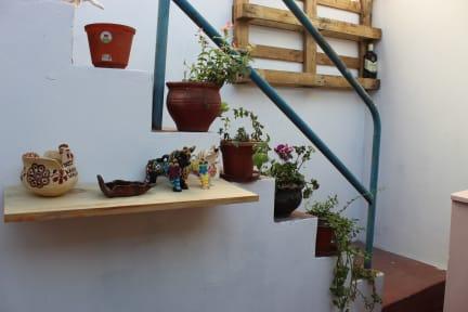 Photos of Boho Hostel Aqp