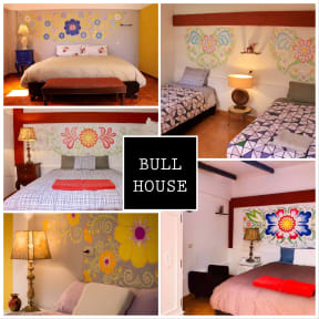Photos de Bull House