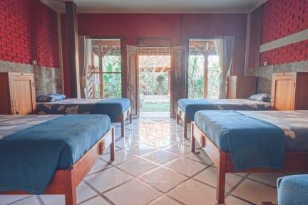 Bilder av Puri Hostel Berawa