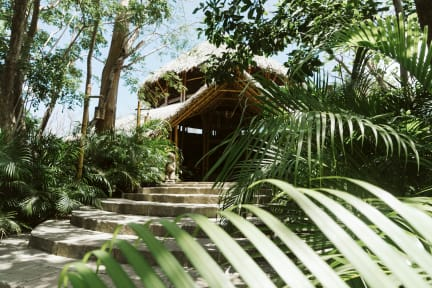 Bilder av Dreamsea Surf Camp Nicaragua