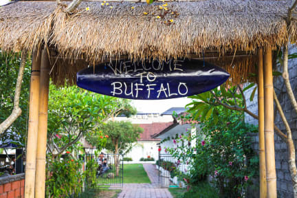 Фотографии Buffalo Surfcamp