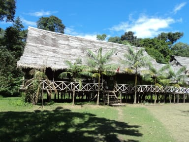 Fotky Amazon Lodge & Safaris