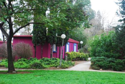 Fotos de Mizra Guest House