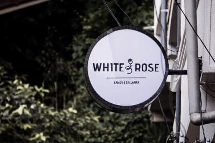 White Rose Hostel照片