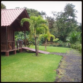 La Fortuna Waterfall Bungalows照片