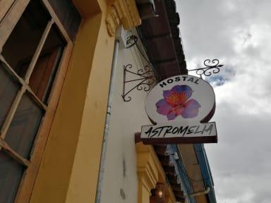 Astromelia Hostal照片