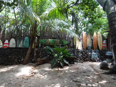 Fotos de Kon Tiki Playa Negra