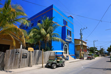 Foto di Hotel Royal Blue