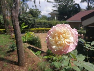 Fotos de Utamaduni House