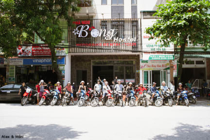 Fotos de Bong Backpackers & Bikes