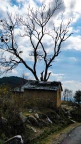 Fotos von Himalayan Heritage Hostel