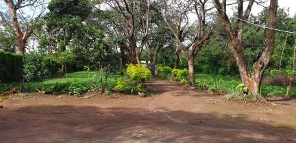 Kuvia paikasta: Swahili Backpackers