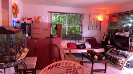 Photos of The International Hostel El Collage