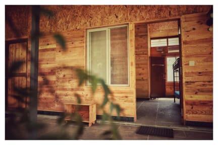 WoodPacker照片