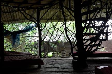 Saraya Ecostay照片