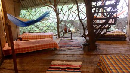 Saraya Ecostay tesisinden Fotoğraflar