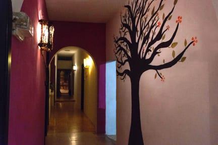 Hostal Casa Ahal의 사진