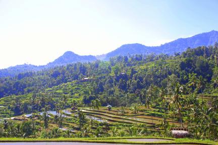 Kuvia paikasta: Ananda Homestay
