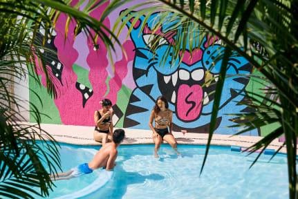 Bilder av Bango Mango Hostel