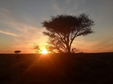 Photos of Bivouac de Sahara Peace