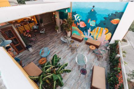 Kuvia paikasta: Distrito Hostel