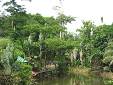 Foto di Sepilok Jungle Resort