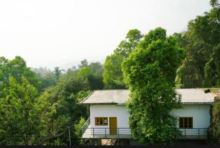 Фотографии Green Pepper Homestay