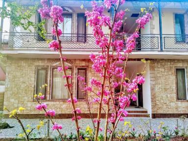 Bilder av Batumi Wonderland Guesthouse