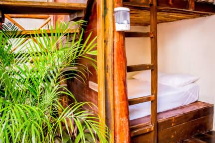 Fotos de oOstel Smart Hostel - Tulum Playa