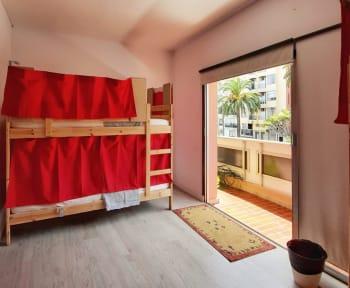 Aguere Nest Hostelの写真