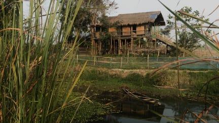 Photos of Sol Village Jungle Lodge