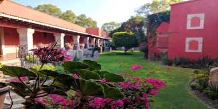 Real de Minas San Miguel de Allende照片