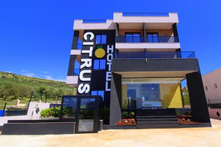 Fotos von Hotel Citrus