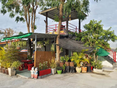 Photos of 77 Resort