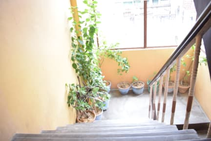 Photos of Family Guest House