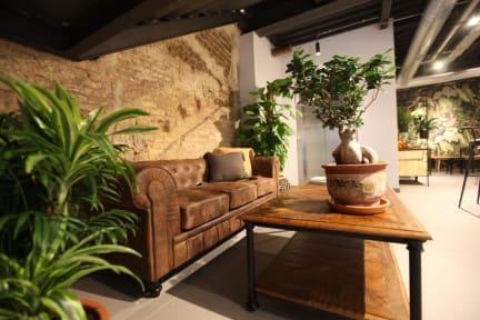 Bilder av The Botanic Hostel