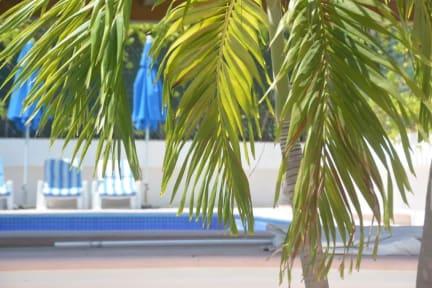 Foto's van Hotel Acapulco Amor