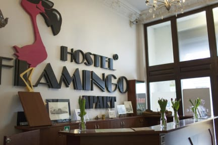 Flamingo Lodz Hostel照片
